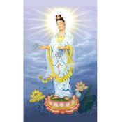Goddess Of Mercy 观世音菩萨 结缘 1