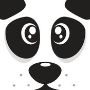 可爱的熊猫块跳...