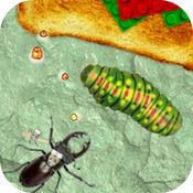 昆虫进化大作战:...