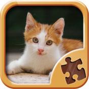 小猫拼图游戏 - 智力游戏 1.1