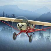飞机飞行丛林飞...