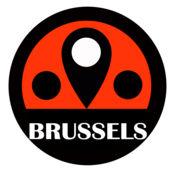 布鲁塞尔旅游指南地铁路线比利时离线地图 BeetleTrip Brus