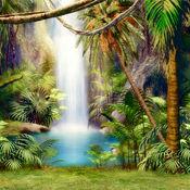 热带雨林高清壁纸收藏图库-个性名言主题背景 1