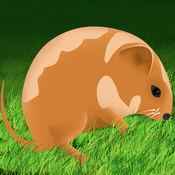 惊人的仓鼠跳冒险亲 - 疯狂的速度运行街机游戏 1.4