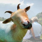 Goat stickers - 照片编辑器山羊贴纸 1