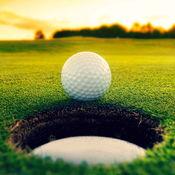 如何打高尔夫知识百科:快速自学参考指南和教程视频 1