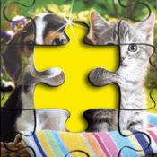 可爱的 小狗 及 小猫 拼图  1