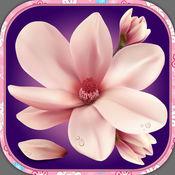 花 墙纸 -  漂亮 锁屏 和 花的 背景图片 1