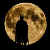 拼图 for 蝙蝠俠...