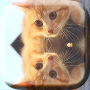 镜面反射相机 - 合并及克隆的照片编辑器图片双重曝光的效
