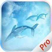 滤镜相机 - 飞鱼特效 & 鲨鱼滤镜 - PRO 1.11