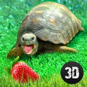 龟模拟器:房子生活 1