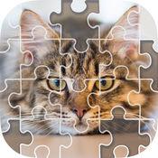 滑块游戏 - 拼图和照片 1