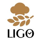 LIGO 粒购 X 雄海