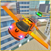 飞行运动肌肉车模拟 2
