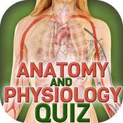 解剖和生理学人体器官测验 1