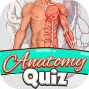 解剖学 测验 免费 科学 教育 游戏 1