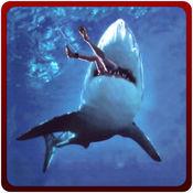 愤怒的鲨鱼袭击模拟器 - 杀手捕食者模拟游戏 1.0.1