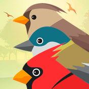 声明鸟PRO 1.3