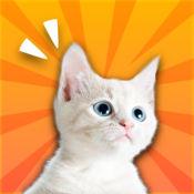 神奇猫哨- 人猫交流器,养猫人必备的训猫神器 1.3
