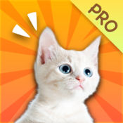 神奇猫哨 Pro - 人猫交流器,养猫人必备的训猫神器 1.2