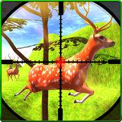 动物狩猎丛林野...