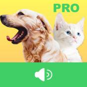 动物声音(专业版) - 听动物声音,感受大自然的魅力 1.4