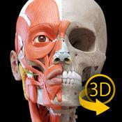 肌肉 | 骨骼 - 人体解剖学3D互动图集 1.5.0