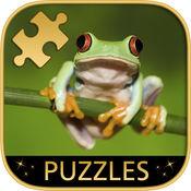 动物 - 益智游戏 1.2