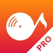 SwiSound Pro - 可视化选择、串流服务和播放音乐 2