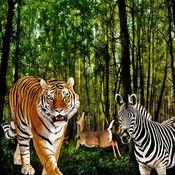 愤怒的豹子多人...