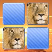 记忆游戏 野生动物照片 孩子和年幼的孩子孩子儿童 1