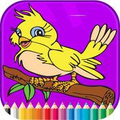 鳥圖畫書 - 活動小子 1