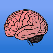 记忆 训练 大脑 挑战 - 心神 实验 1