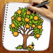 易拉树木和枝叶 1