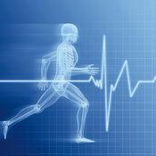 运动医学专业词典和记忆卡片:视频词汇教程和背单词技巧 1