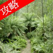 视频攻略 - 森林 (The Forest) 1.0.1