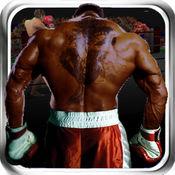 虚拟拳击3D战斗游戏 1.0.3