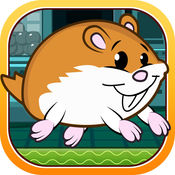 Hammy的超级宠物仓鼠转轮 Pro 1