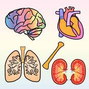 4个孩子的身体器官 [Body Organs 4 Kids] 1.4.0