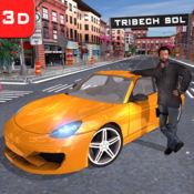 驾驶学校辛游戏 1.0.1