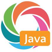 Java Standard Edition API Specification 10.2.1