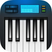 电子琴 - 钢琴键...