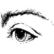 Vision--这里是...