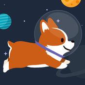 Space Corgi (太空旅行的小狗) 21