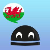 学习威尔士语动词 Pro - LearnBots