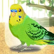 治愈的鹦鹉育成游戏 1.1