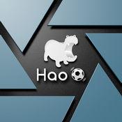Hao球助手