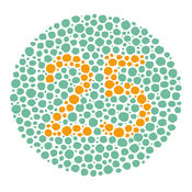 色盲测试 官方