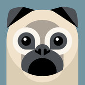 汪星人社区 Dogs Amino Pet Community for Dog and Puppy